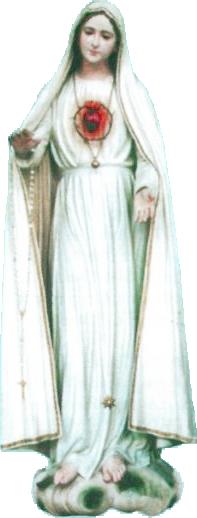 logo di Apostoli Del Cuore Immacolato Di Maria